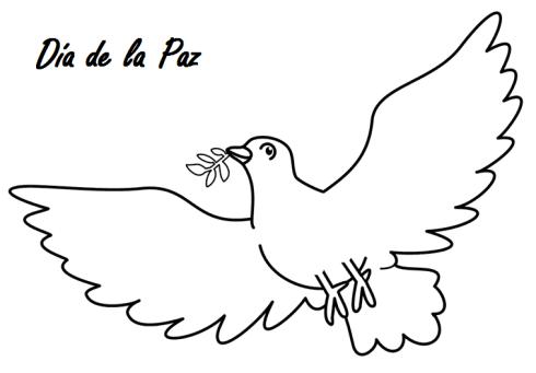 paloma dia paz