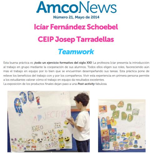 Amco Good Practices 2014